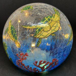 sea turtle gazing globe and light