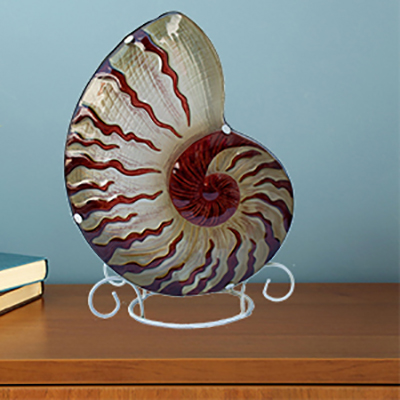 Glass Nightlights - Shells, Sealife & More